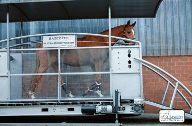 Elite Horsetrainer Sascotec
